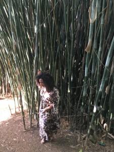 Eliane junto ao bambuzal no fundo do quintal, domínio de Iansã